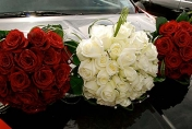 Wedding posie with white and red roses and diamonds and bear grass and camellia leaves