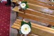 Pew wedding flowers - white gerberas