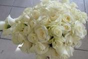 White roses in a teardrop bouquet