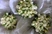 Natural hand tied wedding bouquet with cream roses and cream freesias and camellia leaves