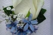 White rose wedding button hole with gypsophila blue tweedia with ivy leaf